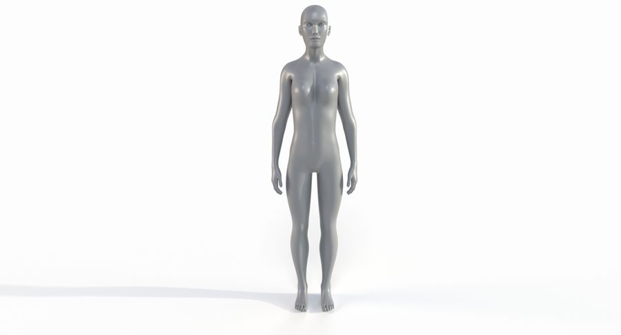Female Base Mesh royalty-free 3d model - Preview no. 28