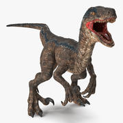 Velociraptor Attacking Pose 3D Model 3d model