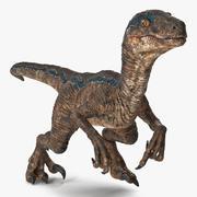 Velociraptor Walking Pose 3D-modell 3d model