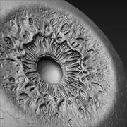 project Eye 3d model