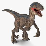 Velociraptor 3D Model 3d model