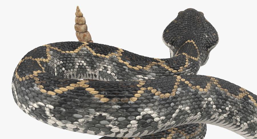 Dark Rattlesnake Attack Pose Modèle 3D royalty-free 3d model - Preview no. 12