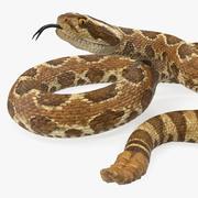 Light Rattlesnake 3d model