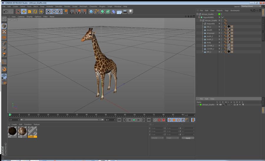 アフリカのキリン3Dモデル royalty-free 3d model - Preview no. 20