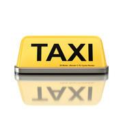 Taxi Zeichen 3d model