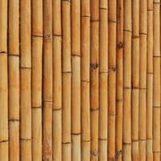 Cerca de bambu ultra realista 3d model