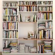 Gabinete con libros 2 modelo 3d