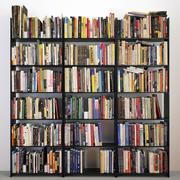 474 boeken set 3d model