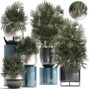 装饰盆栽植物 3d model
