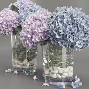 绣球紫蓝色 3d model