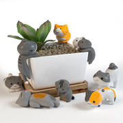 Katzen. Die Einrichtung 3d model