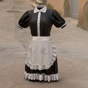 Marvelous Designer Model: Maid Wear 3d model