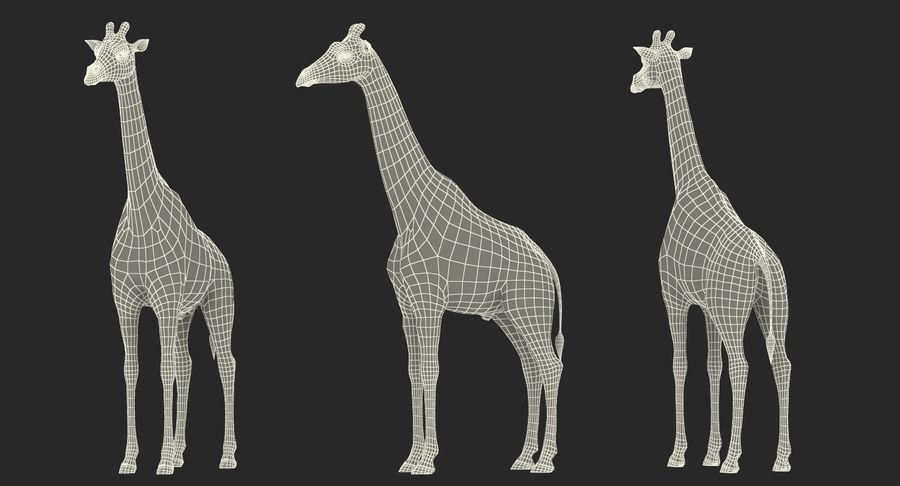 African Giraffe Fur royalty-free 3d model - Preview no. 23