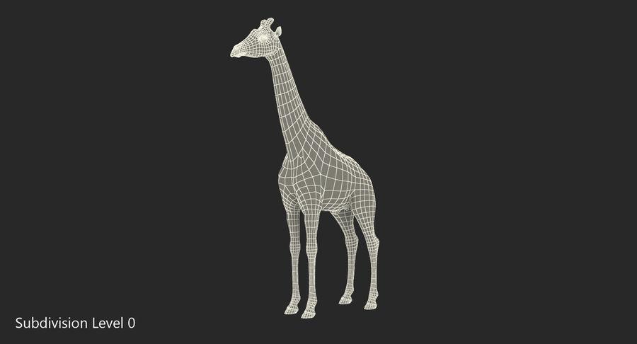 African Giraffe Fur royalty-free 3d model - Preview no. 17