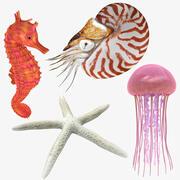 Colección de animales marinos modelo 3d
