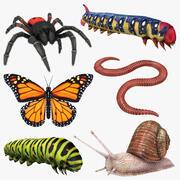 Colección de insectos modelo 3d