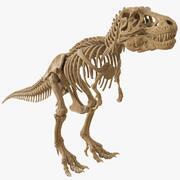 ティラノサウルスレックススケルトン01(HIGH POLY) 3d model