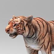 Tiger 2 3d model