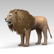 Lion 2 3d model