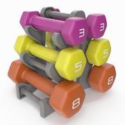 Zestaw hantli fitness ze stojakiem 3d model