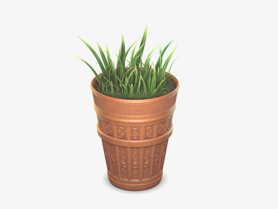 Plant Pot royalty-free 3d model - Preview no. 1