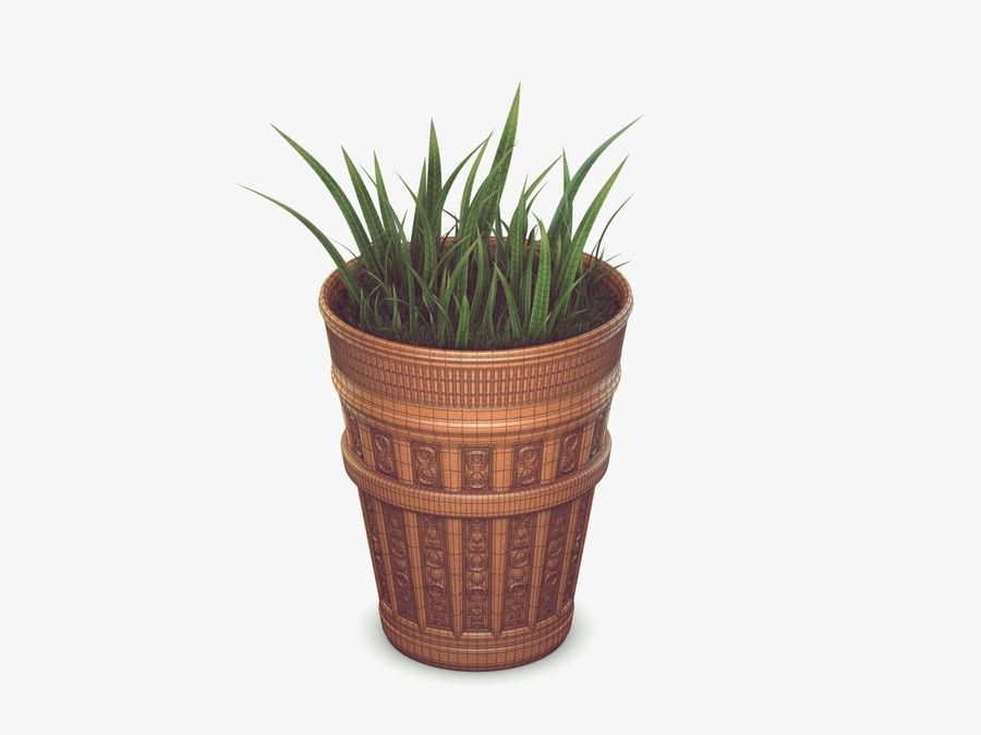 Plant Pot royalty-free 3d model - Preview no. 2