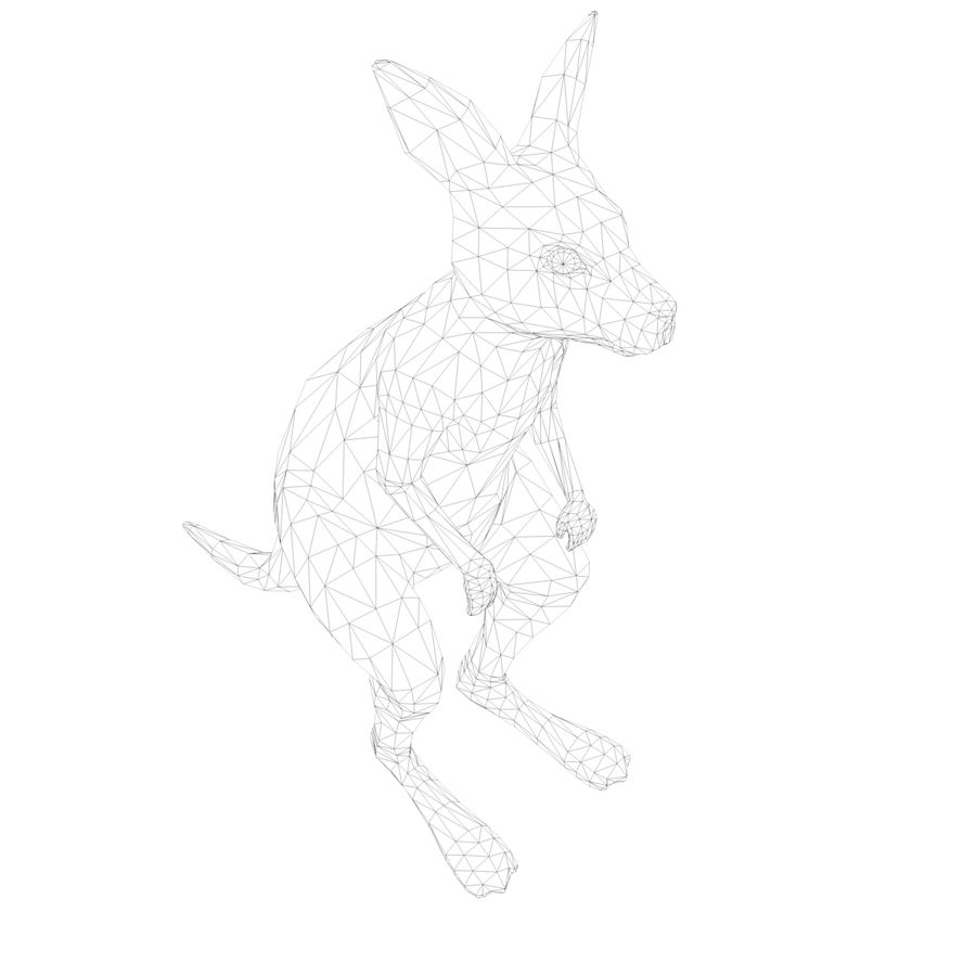 Känguru royalty-free 3d model - Preview no. 11