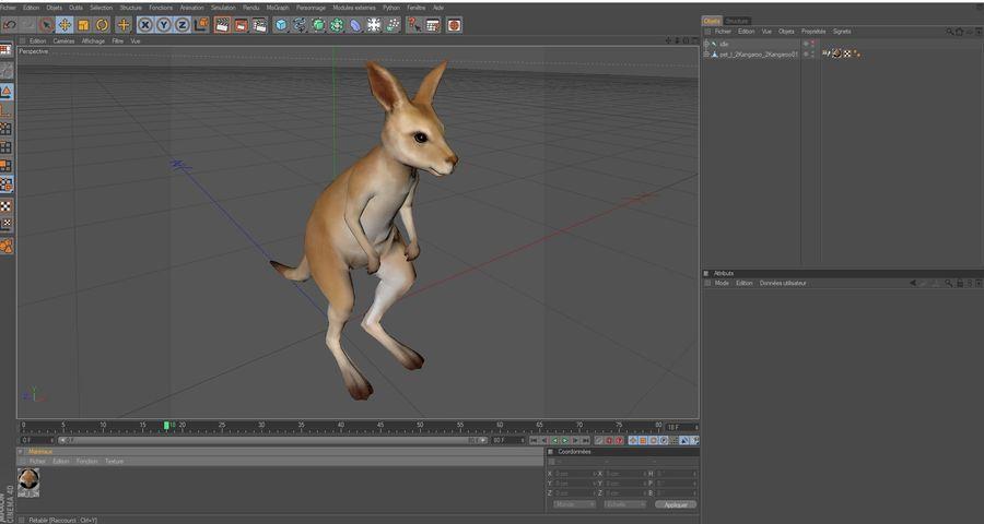 Känguru royalty-free 3d model - Preview no. 2