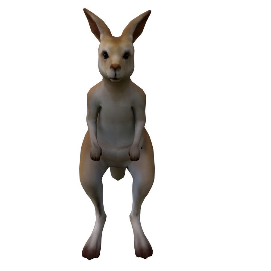 Känguru royalty-free 3d model - Preview no. 5