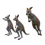 Känguru 3d model