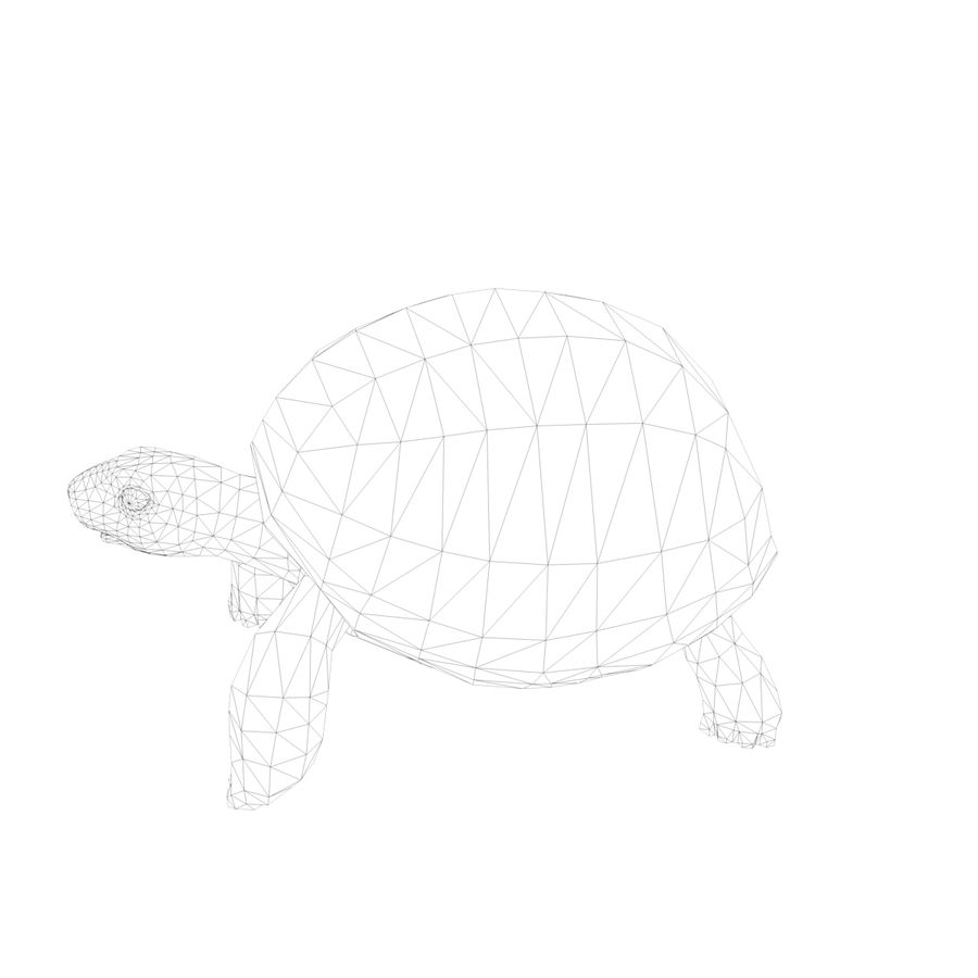 черепаха royalty-free 3d model - Preview no. 12