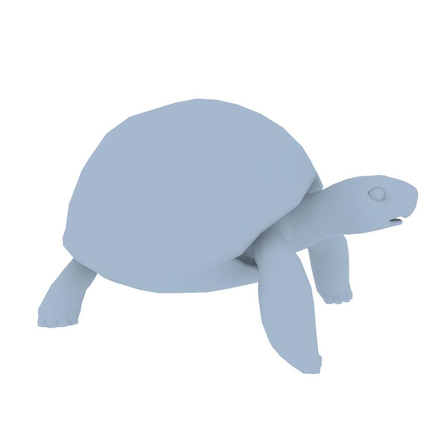 черепаха royalty-free 3d model - Preview no. 16