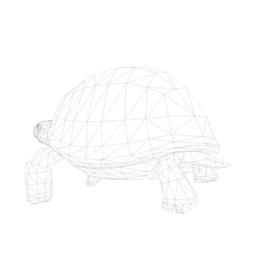 черепаха royalty-free 3d model - Preview no. 13
