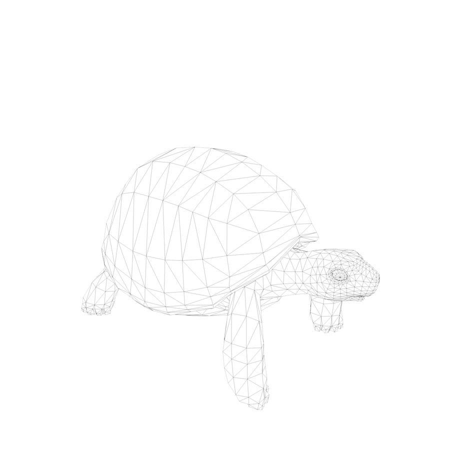 черепаха royalty-free 3d model - Preview no. 9