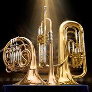 雅马哈管乐器 3d model