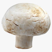 White Button Mushroom 05 3d model