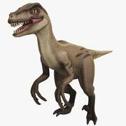 Veloceraptor风格化 3d model