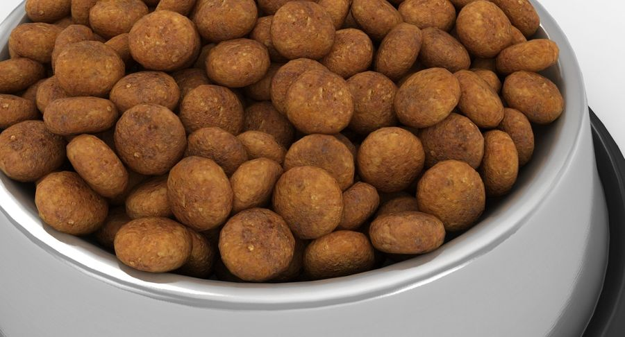 Bowl of Dog Food royalty-free 3d model - Preview no. 8