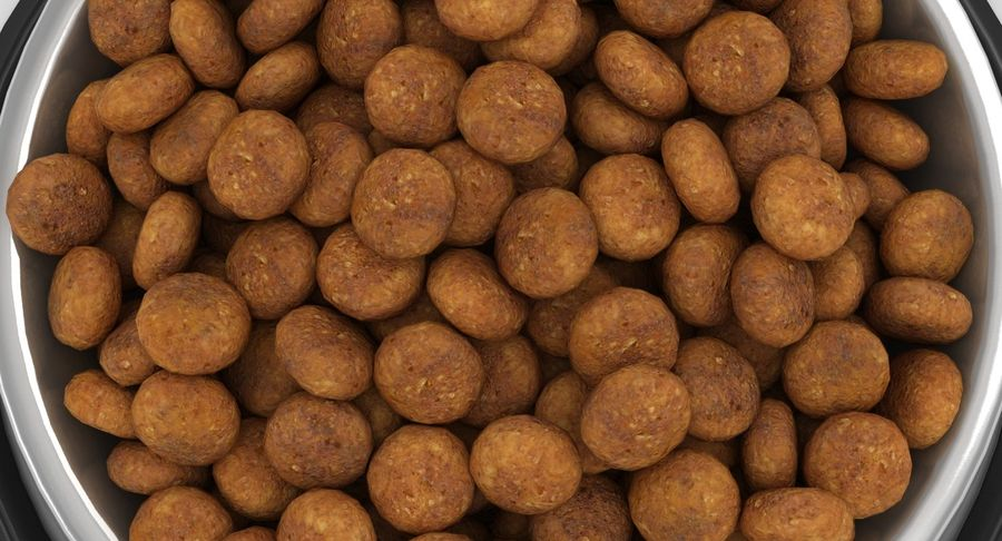 Bowl of Dog Food royalty-free 3d model - Preview no. 12