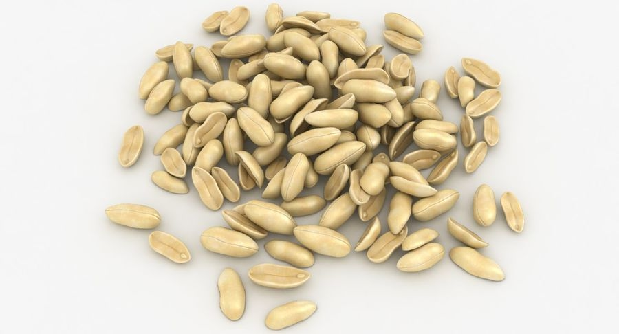 Peeled Peanut Pile royalty-free 3d model - Preview no. 14