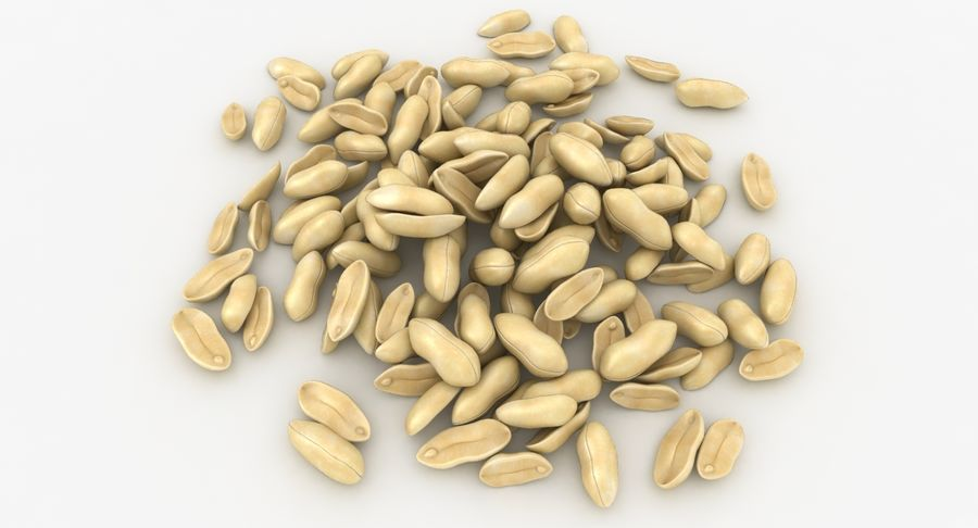Peeled Peanut Pile royalty-free 3d model - Preview no. 3