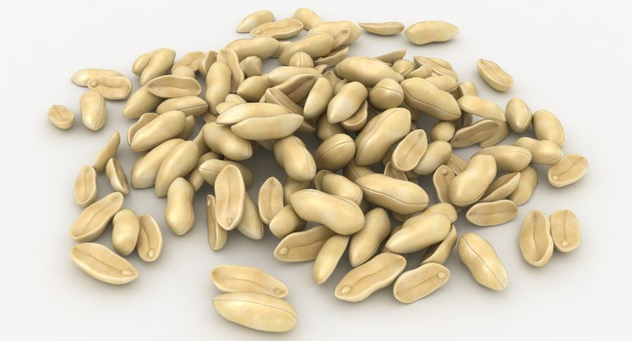 Peeled Peanut Pile royalty-free 3d model - Preview no. 4