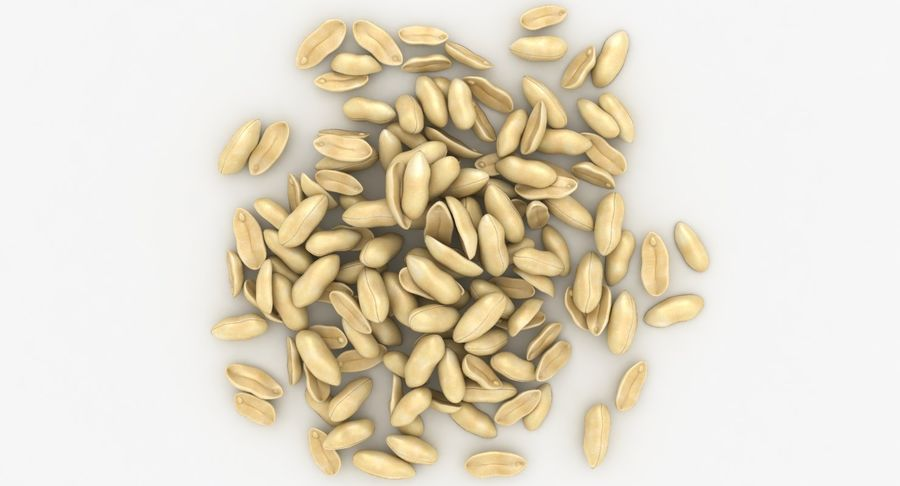 Peeled Peanut Pile royalty-free 3d model - Preview no. 6