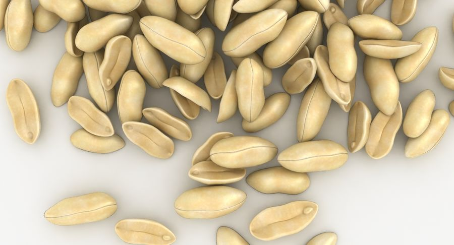 Peeled Peanut Pile royalty-free 3d model - Preview no. 13
