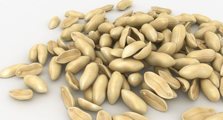Peeled Peanut Pile royalty-free 3d model - Preview no. 11