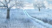 Winter Snow Meadow Path 3d model