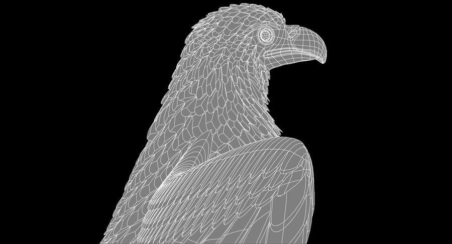 Adler royalty-free 3d model - Preview no. 21