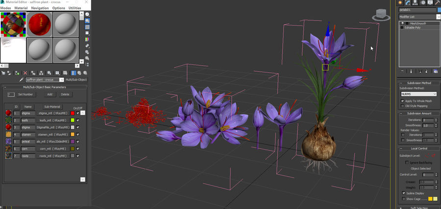 Plant Parts of Crocus with Saffron royalty-free 3d model - Preview no. 19