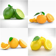 柑橘类水果 3d model