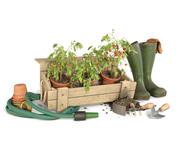 Kit de ferramentas para plantas de tomate 3d model
